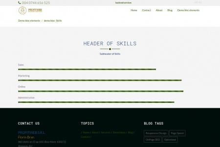 demo bloc: Skills