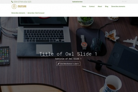 demo bloc: Owl Carousel